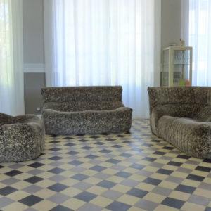 Salon modèle Aralia par Michel Ducaroy pour Ligne Roset vintage